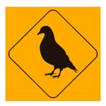 palomas-exterminator-1